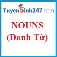 Tổng quan về danh từ (Nouns)