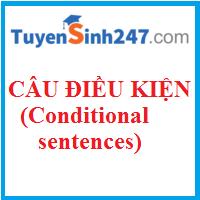 Các loại câu điều kiện cơ bản (Conditional sentences)