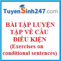 Bài luyện tập về câu điều kiện hay có đáp án (Exercises on conditional sentences)