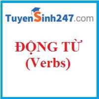Các loại động từ cơ bản và đặc điểm của chúng (Types of Verbs)