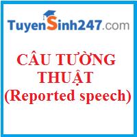 Các cách tường thuật từ câu nói trực tiếp sang câu nói gián tiếp (Reported speech)