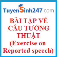 Bài luyện tập về câu tường thuật hay có đáp án (Exercises on reported speech)
