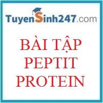 Bài tập peptit - protein