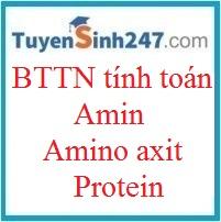 BTTN tính toán amin - amino axit - protein