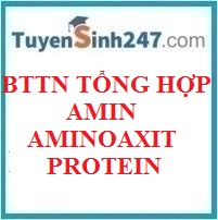 BTTN tổng hợp amin - aminoaxit - protein