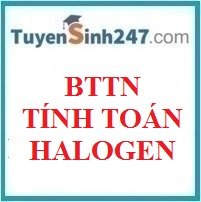 BTTN tính toán halogen