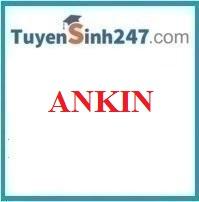 Ankin