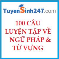 100 câu luyện tập về ngữ pháp và tự vựng hay (Có đáp án)