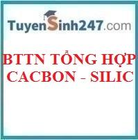 BTTN tổng hợp cacbon - silic