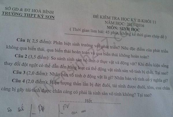 Đề thi học kì 2 lớp 11 môn Sinh 2016 THPT Kỳ Sơn