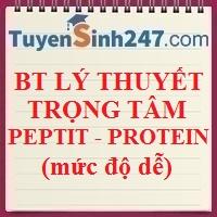 Bài tập lý thuyết peptit - protein (dễ)