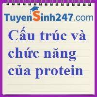 Cấu trúc và chức năng của protein