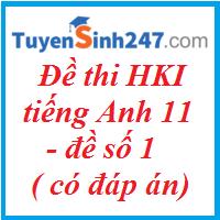 Đề thi HKI tiếng Anh 11 ( có đáp án) - Đề số 1