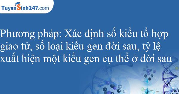 Xác định số kiểu tổ hợp giao tử, số loại kiểu gen đời sau, tỷ lệ xuất hiện một kiểu gen cụ thể ở đời sau