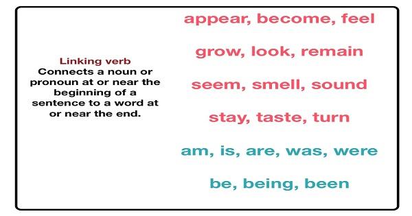 Linking Verbs [ Liên động từ ]