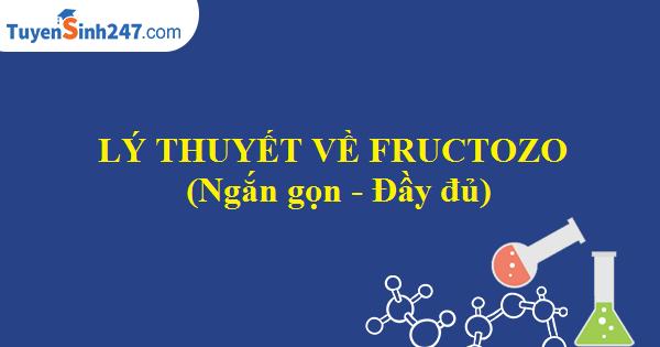 Lí thuyết về fructozo (Ngắn gọn - Đầy đủ)