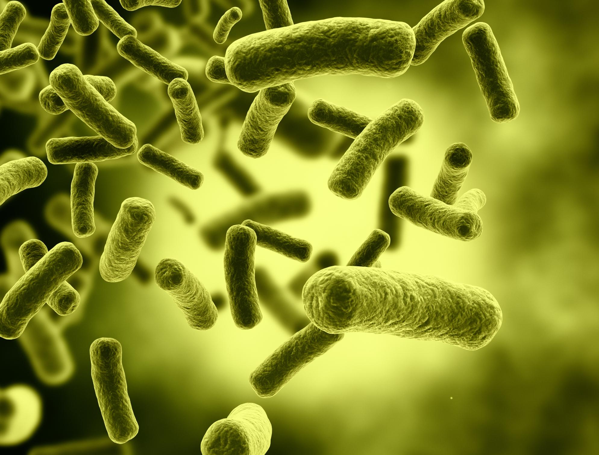 Dinh dưỡng, chuyển hóa vật chất và năng lượng ở vi sinh vật
