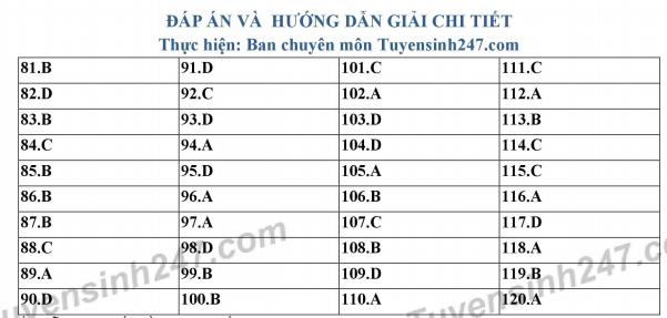 Đề thi thử THPT QG môn Sinh - THPT Chuyên Phan Bội Châu - Nghệ An lần 1 - có đáp án