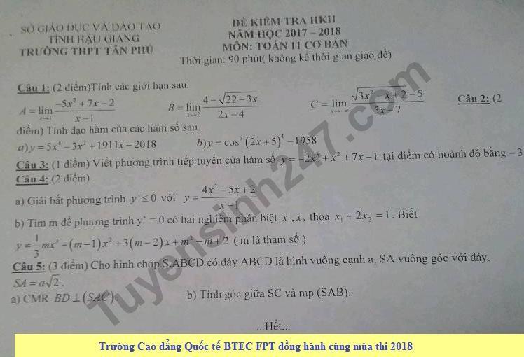Đề thi học kì 2 lớp 11 môn Toán năm 2018 - THPT Tân Phú
