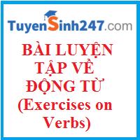 Bài luyện tập về động từ (Exercises on Verbs)
