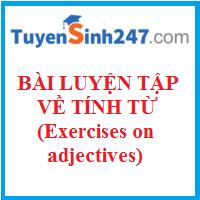 Bài luyện tập về tính từ hay có đáp án (Exercises on Adjectives)