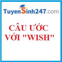 Các loại câu ước cơ bản (Wishes)