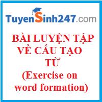 Bài luyện tập về cấu tạo từ hay có đáp án (Exercise on word formation)
