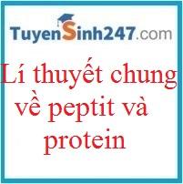 Lí thuyết về peptit - protein (có video)