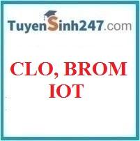 Flo - Brom - Iot