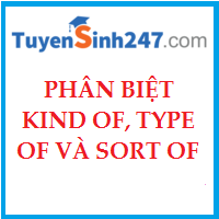 Phân biệt kind of, type of và sort of