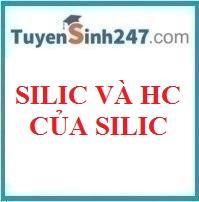 Silic và hợp chất của silic