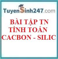 BTTN tính toán cacbon - silic