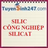 Silic. Công nghiệp silicat