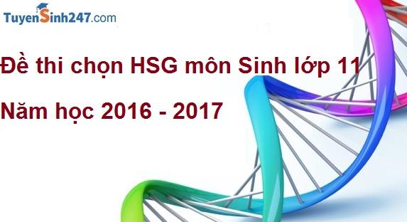 Đề thi chọn HSG môn Sinh lớp 11 - THPT Thuận Thành 1 - Bắc Ninh năm học 2016 - 2017( Có lời giải chi tiết)