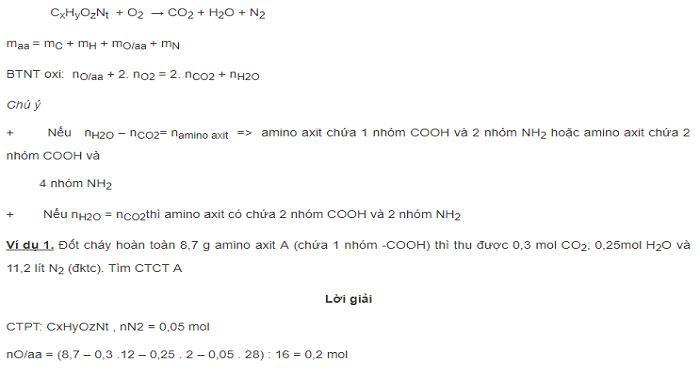 Phương pháp giải bài tập đốt cháy amino axit