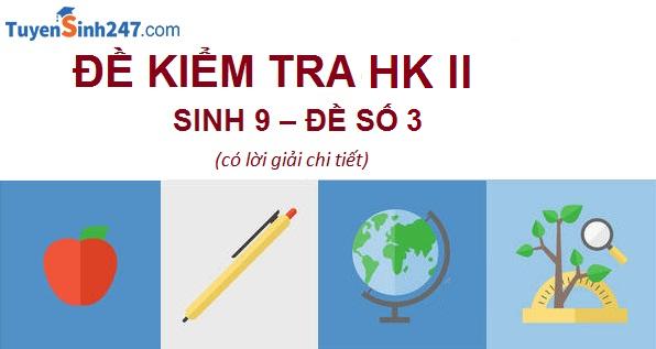 Đề kiểm tra HK II - Sinh học 9 - Đề 3 (có lời giải chi tiết)
