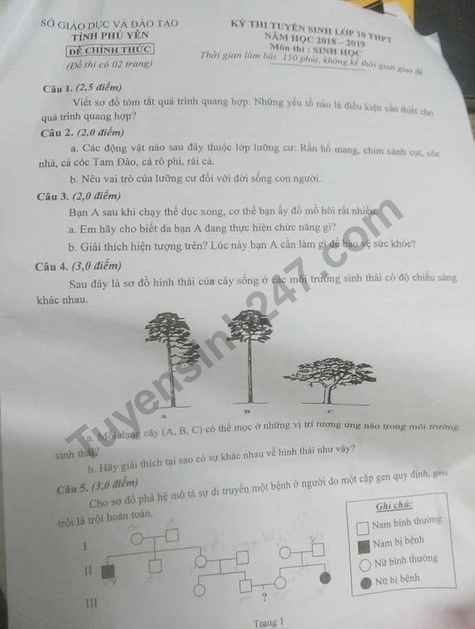 Đáp án và đề thi vào lớp 10 môn Sinh học tỉnh Phú Yên 2018