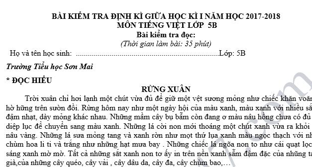 Đề kiểm tra giữa học kỳ 1 môn Tiếng Việt lớp 5 năm 2018 - Tiểu học Sơn Mai