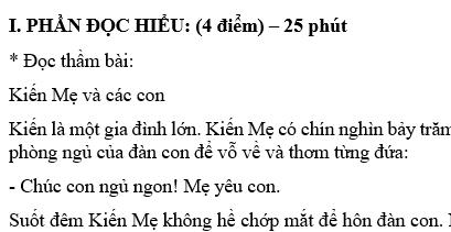 Đề thi giữa học kì 1 môn Tiếng Việt lớp 3 năm 2018 - TH Số 2 Sơn Thành Đông