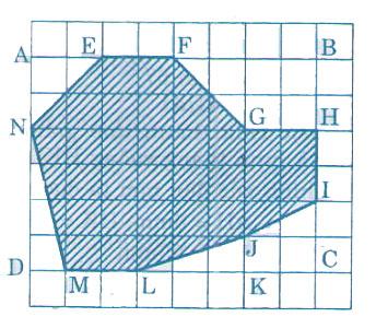 dap-an-bai-40
