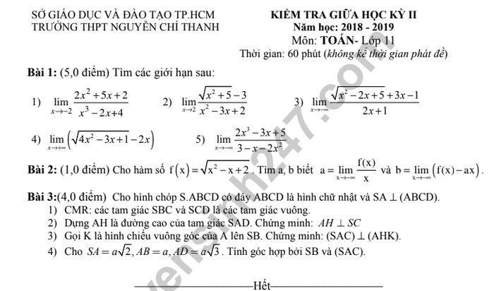 Đề thi giữa kì 2 lớp 11 môn Toán - THPT Nguyễn Chí Thanh 2019
